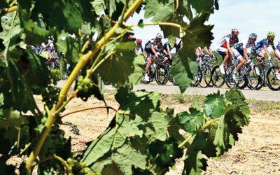 Un sprint entre viñedos para la cuarta etapa de la XLIII Vuelta a Burgos